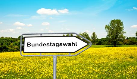 Steuerpolitische Programme der Parteien zur Bundestagswahl 2013